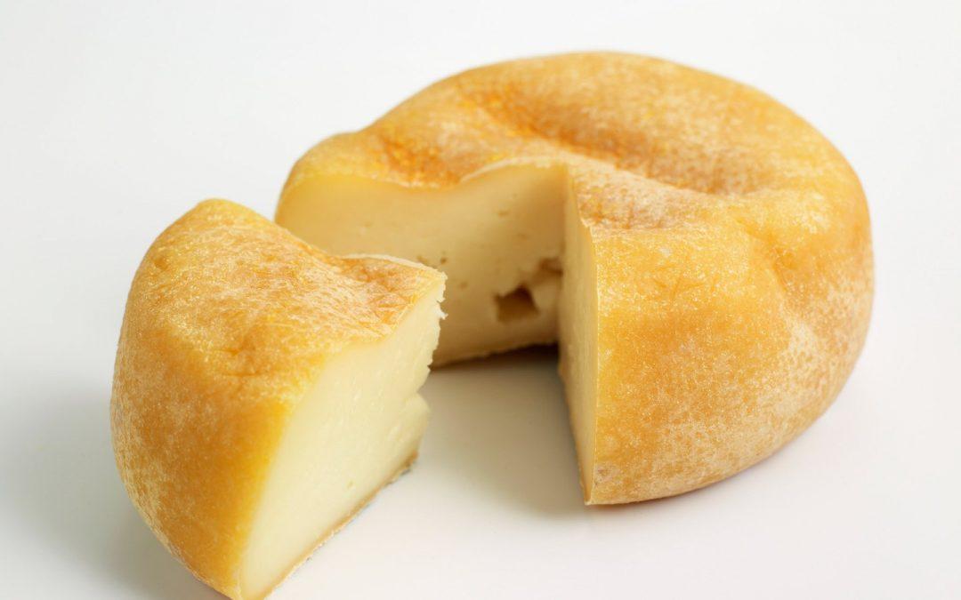 Spanish Cheese (Portugal) – Daily Devotional – Azeitão